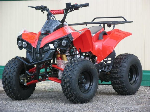 ATV Piton Grizzly 2w4, Impor